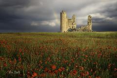 The woman in red (Luis R.C.) Tags: caudilla amapolas castillo nubes paisajes nikon d610