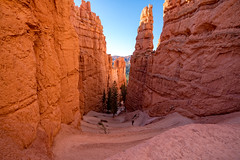 Serpentine Trail (Patty Bauchman) Tags: southwest utah brycecanyonnationalpark americansouthwest hoodoos landscape nature serpentinetrail switchbacks
