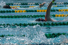 20180609-SG-Day1-Swim-JDS_7979 (Special Olympics Southern California) Tags: avp albertsons basketball bocce csulb ktla5 longbeachstate openingceremony pavilions specialolympicssoutherncalifornia swimming trackandfield volunteers vons flagfootball summergames