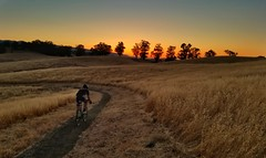 Just another Wednesday night ride. (acyee) Tags: wnr wednesdaynightride cyclocross gravel acyee arastradero sunset cycling gravelgrinder cross bike palo alto paloalto