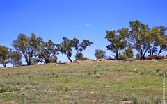 42 Matilda Crescent, Gumly Gumly NSW