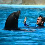 Zoo Sete Rios thumbnail