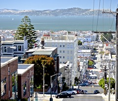 SF Bay, looking down Webster Street, crossing Union Street, (David McSpadden) Tags: sanfrancisco unionstreetmusicfestival unionstreet 42annualunionstreetfair bands people websterstreet sfbay