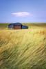 The Barn (Rich Walker75) Tags: sixpennyhandley dorset barn field landscape landscapes landscapephotography landmark landmarks cloud wheat fields canon efs1585mmisusm eos eos80d