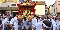 Tenno Matsuri - Heavy Lifting a Huge Shrine (Ronin Dave) Tags: japan japanesefestival japaneseculture festival religion shinto tennomatsuri arakawa tokyo mikoshi culture heavylifting strength