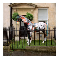 Crazy Horse (ngbrx) Tags: bath somerset england horse kurtcobain jimihendrix pixies entrance eingang pferd zaun fence skulptur sculpture uk united kingdom great grossbritannien britain