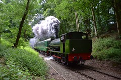 Hunslet Locomotive 'Lord Phil' working hard up the gradient through Coopersale, Epping Forest to North Weald. Epping Ongar Railway Steam Gala. 08 06 2018.jpg (pnb511) Tags: eppingongarrailway trains heritage railway engine train loco locomotive smoke steam carriages tree trees track
