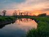 Untamed (John Westrock) Tags: nature sunset water reflection wetland marsh waukesha mitchellpark evening dusk trees olympusomdem1markii olympusmzuikodigitaled1240mmf28pro landscape yextwisconsin