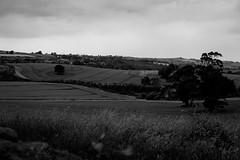 The irish landscape (Johan's tilted tripod) Tags: bw landskap nordirland northernireland blackwhite monochrome landscape ireland