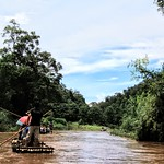 Bamboo rafting-Maetaeng elephants park thumbnail