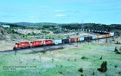 (SEE & HEAR)---CP 5414-5756-5900, 471 w, Coniston, ONT. 9-17-1994 (jackdk) Tags: train railroad railway cp cpr canadianpacific canada emd emdsd40 emdsd402 sd40 sd402 freighttrain freight trailertrain coniston standardcab multimark pacman seeandhear seehear
