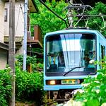 Enoshima Electric Railway 2000 Type Train at the Goryo-jinja Shrine ; 江ノ島電鉄2000形電車(鎌倉・御霊神社) thumbnail