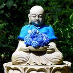 Blue Jizo of Meigetsuin Temple. Kamakura : 北鎌倉・明月院 青地蔵 thumbnail