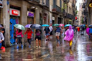 Colors of June! - ¡Los colores del Junio!