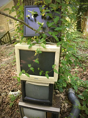 Out of Favor (BKHagar *Kim*) Tags: bkhagar nature takingover vines monitor screen old technology notworking broken