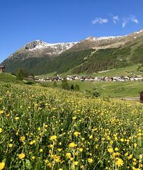 Livigno (quanuaua) Tags: ifttt 500px livigno valley alpine village mountain range alps valtellina italy springtime