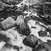 North Wawona: Chilnualna Creek