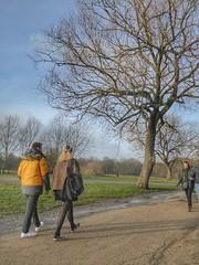 Hampstead Heath, London, England (PaChambers) Tags: hampstead heath hampsteadheath london park green uk england urban winter 2018 boy tights pantyhose girl man woman