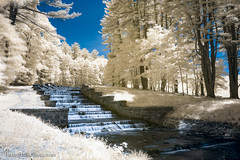 Ashland State Park IR (Brian M Hale) Tags: ir infrared infra red 590nm 590 lifepixel outside outdoors ma mass massachusetts newengland new england usa brian hale brianhalephoto sky water fall falls waterfall steps manmade man made trees nature long exposure blue softfocus soft focus lee filter filters breakthroughphotography breakthrough photography 4 ashland state park