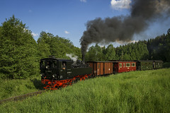 Dampflok 99 5906-5 (DeanB Photography) Tags: lok dampflok zug sonderfahrt selketal eisenbahn triebwagen dampf kohle rus wagon schiene 9959065