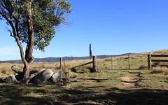 Lot 1 Bruxner Highway, Tenterfield NSW