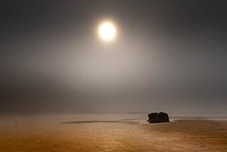 A Moody Foggy Day on the Beach