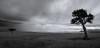 Dramatic Masai Mara (karsten.schtz) Tags: urlaub landschaft reisen safari kenia afrika masaimara vacation holiday travel kenya africa masai mara tanzania serengeti outdoor wildlife nature wildlifephotography landscapephotography naturephotography photogrtaphy black white bw blackwhite lumix lumixexperience panasonic g5