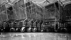 vehicle of consumerism (Stitch) Tags: weekly shopping carts supermarket quezoncity manila philippines blackandwhite wormseyeview