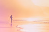 One in a million (Mimadeo) Tags: lonely person beach walking man solitude loneliness walk sunset silhouette water ocean sea alone sand sky sunrise active sunlight sun lifestyle evening independent freedom free independence landscape beautiful vintage retro one nature people background instagram toned filter effect orange red warm golden