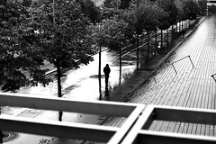 Along the brilliant staircases (pascalcolin1) Tags: paris13 bnf homme man pluie rain reflets reflection brillant escaliers staircase photoderue streetview urbanarte noiretblanc blackandwhite photopascalcolin 50mm canon50mm canon