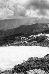 Sierra Nevada 2 (Pepa Morente ( 2.200.000 de VISITAS )) Tags: spain españa andalucía granada belleza naturaleza natural sierranevada sierra montaña blancoynegro