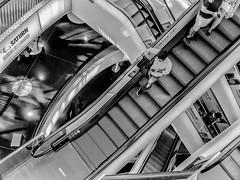 Frankfurt busy world (michaelhertel) Tags: frankfurt zeil zeilgalerie bw sw monochrome people rolltreppen escalator germany travel shopping