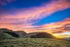 "合歡北峰小溪營地 -14 (billlushana1) Tags: sony sonya7r sonyalpha sonyphotography canon ef1740mmf4lusm taiwan taiwantop100peaks 100peaksoftaiwan mountain mountaintrail hehuanshan thecentralrange taroko tarokonationalpark nationalpark cloud mountain"" sunset sunrise travel trekking 台灣 太魯閣國家公園 太魯閣 合歡山 合歡北峰 小溪營地 仁愛鄉 臺灣省 tw"
