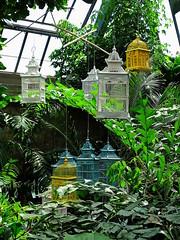 Cages (The-Beauty-Of-Nature) Tags: summer june juni nature germany deutschland plants pflanzen green grün lush sunny sun sonne sonnig warm stuttgart wilhelma botanic garden botanischer garten zoo