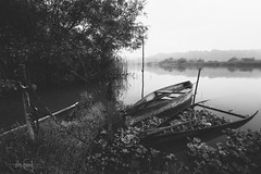 Nothing lasts forever (RuiFAFerreira) Tags: beauty bw black blackwhite wide white waterscape mood monochromat monochrome canon efs1018mmf4556isstm exterior fog boats landscape nature portugal paisagem pateira river uwa