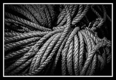 Twisted (Latitude53 Photography) Tags: rope bnw black white monochromatic seaside fishing port