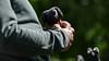 Jealousy is... (PChamaeleoMH) Tags: birds centrallondon london pigeons stjamesspark