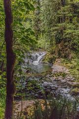 2018 Oregon - christopherallisonphotography-0888 (christopherallisonphotography) Tags: eugeneoregon covered bridge florence oregon waterfalls