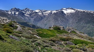 349. Loma de Papeles. Sierra Nevada.