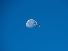 Taking you to the Moon (wittowio) Tags: copa copaairlines aviation spotting aircraft moon mroc airliner embraer emb190