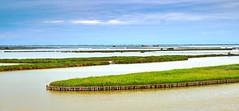 valle di comacchio (lotti roberto) Tags: deltadelpo romagna comacchio gorino po water palude green riverbank pond xpro2