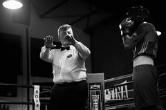 30626 - Referee (Diego Rosato) Tags: boxelatina boxe boxing pugilato nikon d700 2470mm tamron rawtherapee bianconero blackwhite ring match incontro referee arbitro