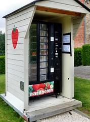 Borgloon - Aardbeien (Martin M. Miles) Tags: strawberries erdbeeren fraise vending vendigmachine borgloon aardbeien flandern flanders belgium