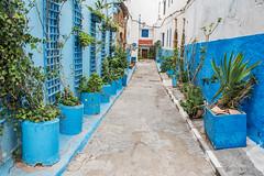 _DSC4501 (BasiaBM) Tags: kasbah udayas rabat morocco