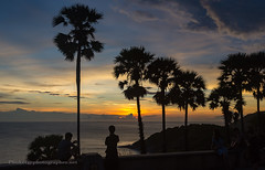 Sunset with Palms at Promthep Cape, Phuket island, Thailand (Phuketian.S) Tags: sunset promthep cape tree palm sky sea cloud sun water landscape nature thailand phuket island beach phuketian