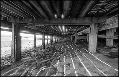 Under the Boardwalk...down by the sea. (exreuterman) Tags: 35mm film fomapan ro9 developer epson v600 scanner leighonsea essex southend beach seaside daytrip cockles mussels shellfish