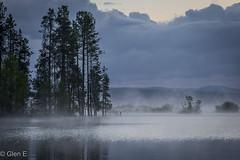 Lake Almanor (nebulous 1) Tags: lakealmanor morning mist trees waterclouds reflection nikon nebulous1 glene