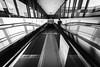 One for Silö (Zesk MF) Tags: bw black white mono architecture rolltreppe man fahren weitwinkel 8mm zesk lines glas window shadows sigma nikon