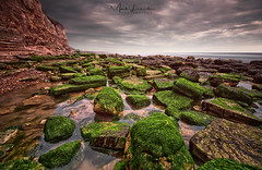 One thousand tides gone (Mark Leader) Tags: hastings fairlight sussex moss rocks low tide green detail sharp coast beach shore rock rockpool