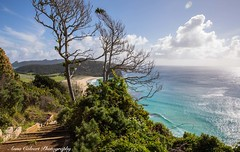 View from Mutton Bird Point (Anna Calvert Photography) Tags: australia lordhoweisland adventure island landscape nature outdoors scenery sunrise beach lordhowe rocks surf dawn water blinkybeach palms muttonbirdpoint